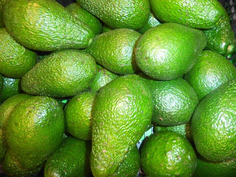 pilha de abacates frescos maduros fotos de stock