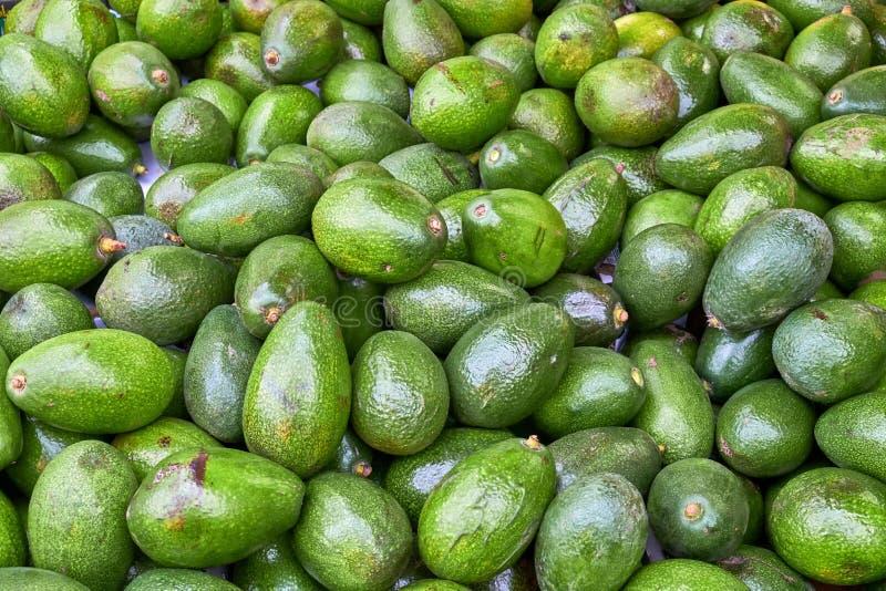 Pilha de abacates frescos para a venda fotografia de stock