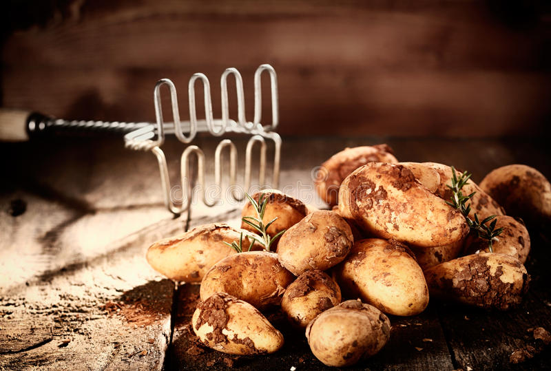 Pilha de batatas earthy frescas fotografia de stock royalty free