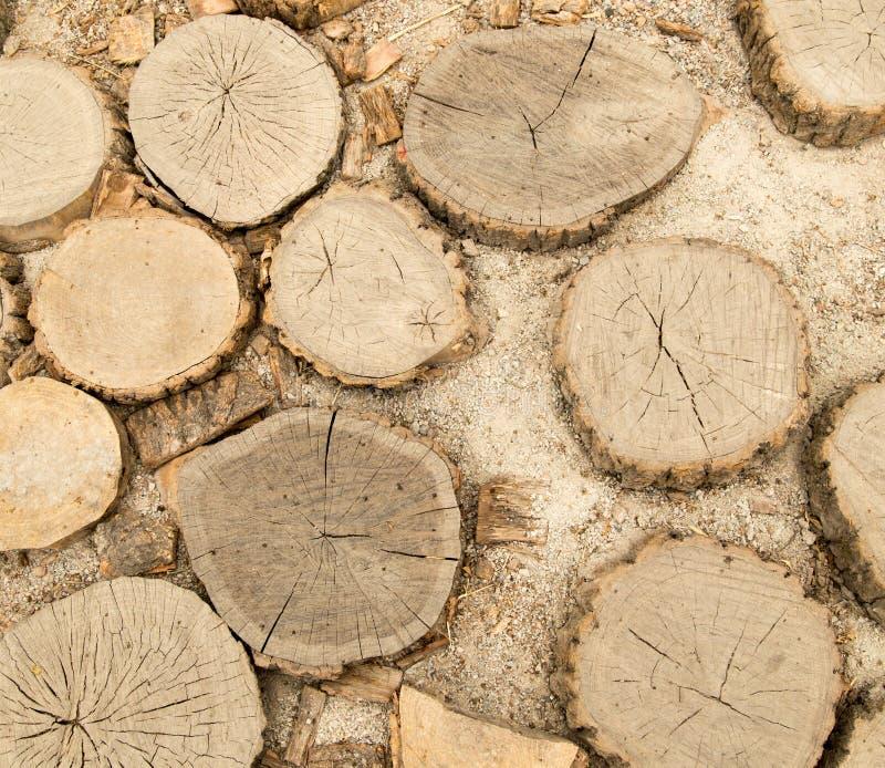 Pilha de cotoes de árvore, estrutura das madeiras foto de stock royalty free