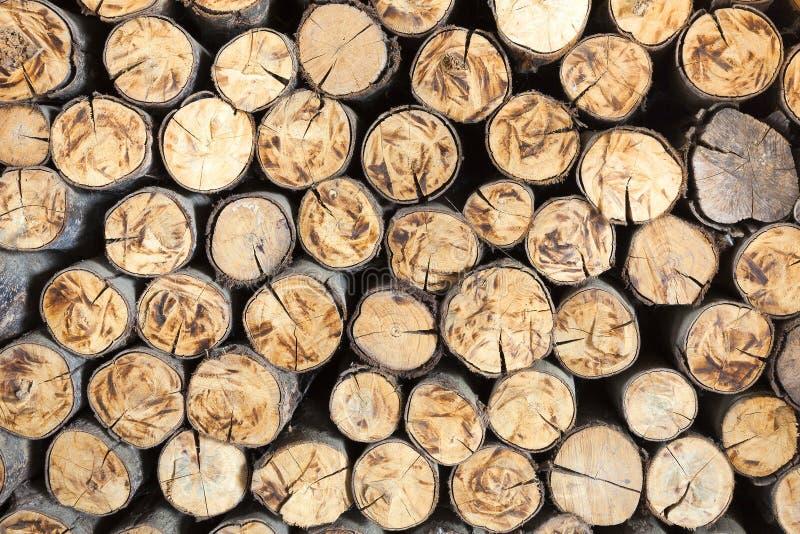 Pilha de cotoes de árvore, estrutura das madeiras imagem de stock