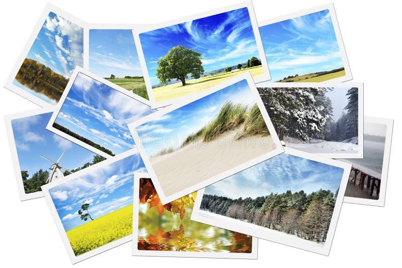 Pilha de fotos da natureza fotografia de stock