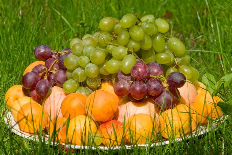 Pilha de frutas frescas na grama fotos de stock royalty free