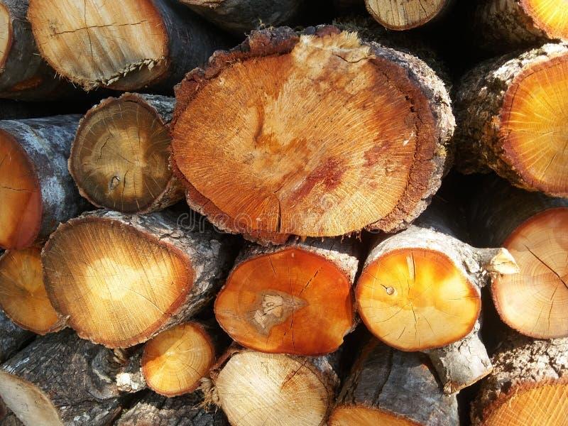 Pilha de lenha para fogão, lareira. Fundo Firewood. Textura de madeira fotografia de stock royalty free