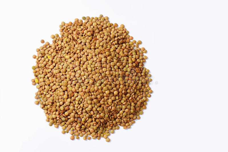 Pilha de lentilhas marrons fotografia de stock royalty free