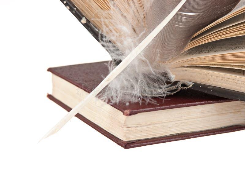 Pilha de livros e de pena imagem de stock royalty free