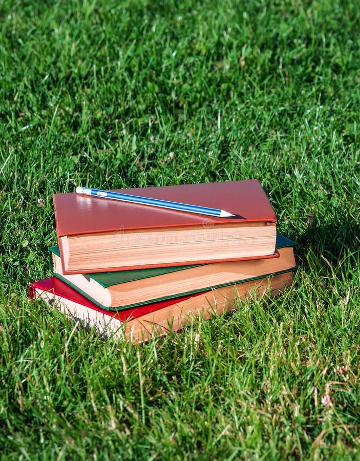 Pilha de livros na grama fotos de stock royalty free