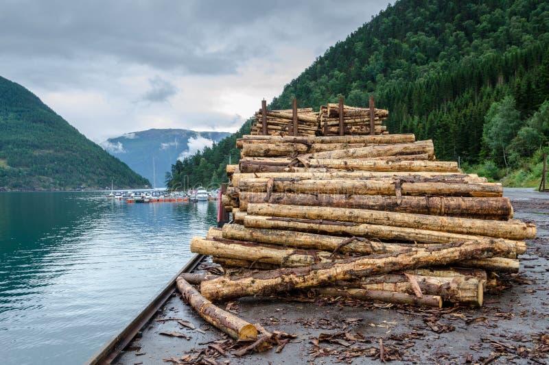 Pilha de logs abatidos no cais fotografia de stock royalty free