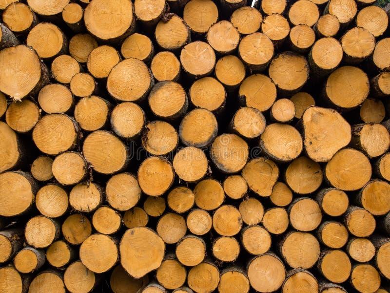 Pilha de madeira imagem de stock royalty free