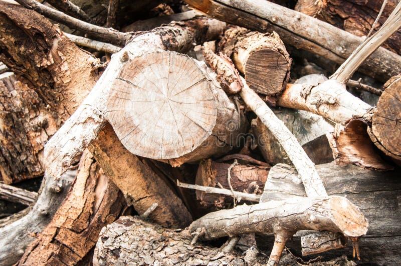 Pilha de madeira e varas menores fotos de stock