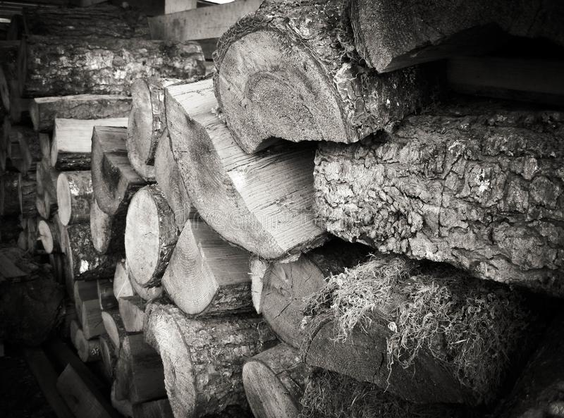 Pilha de madeira em preto e branco fotografia de stock