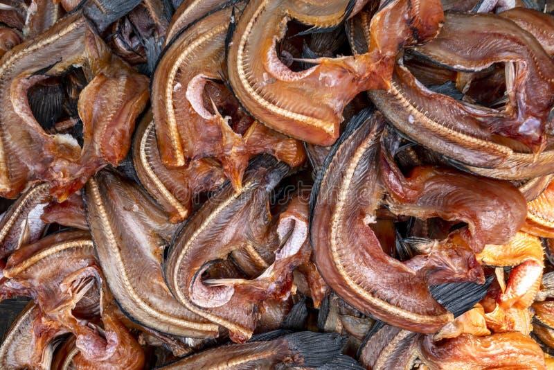 A pilha de peixes secados do snakehead indicou em um mercado local imagens de stock