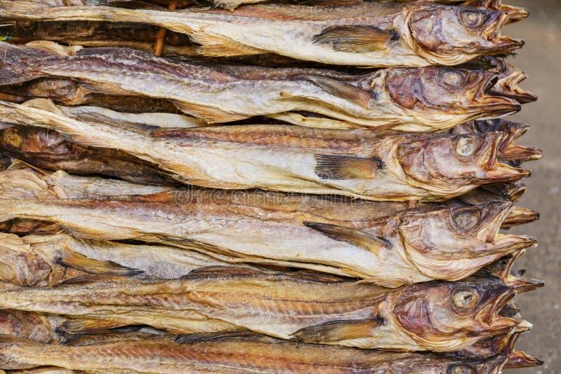 Pilha de peixes secos de sal imagem de stock
