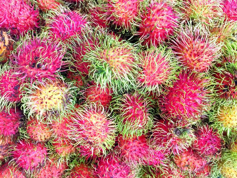 Pilha de Rambutans frescos imagem de stock