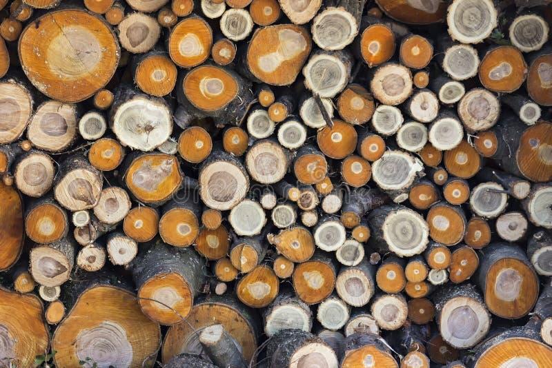 Pilha de ramos cortados foto de stock