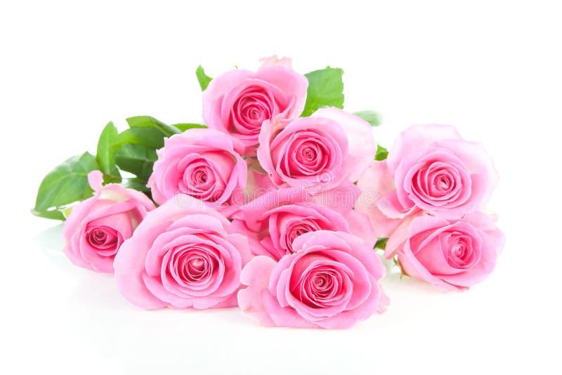 Pilha de rosas cor-de-rosa imagens de stock