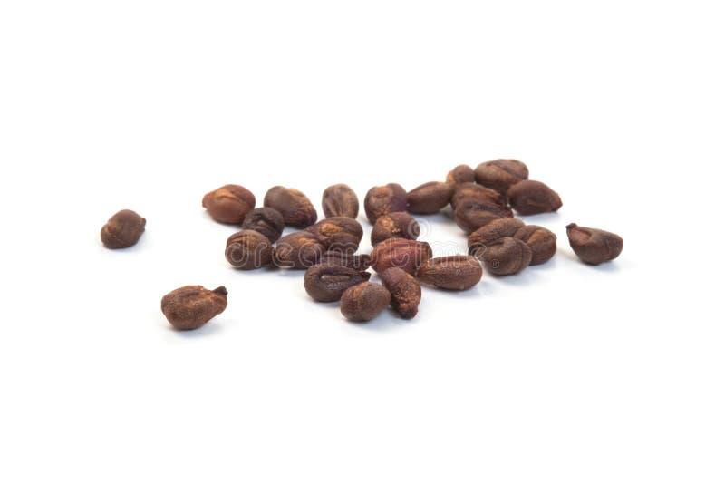 Pilha de sementes da uva secada fotografia de stock royalty free