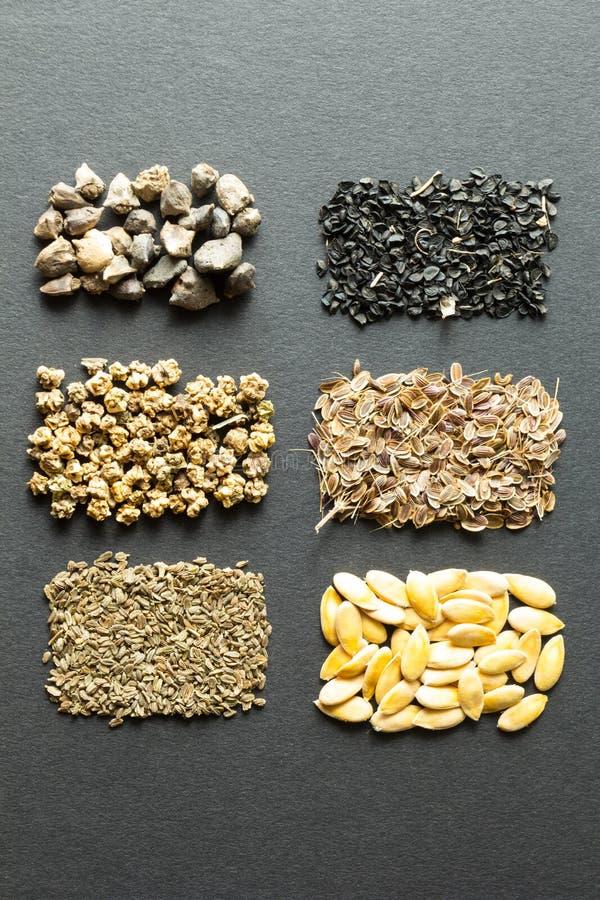 Pilha de sementes orgânicas em um fundo preto: ruibarbo, alface, beterrabas, espinafres, cebola, aneto, melão, cenoura, erva-doce imagem de stock