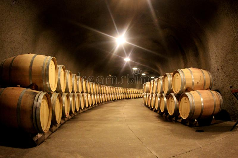 Pilha de tambores de vinho em uma adega de vinho foto de stock royalty free