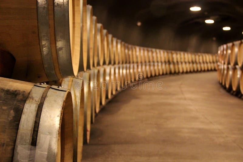 Pilha de tambores de vinho em uma adega de vinho foto de stock