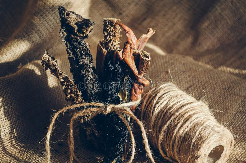 Pilha do close-up A de varas feitas malha triplicar-se da carne Deleites para c?es Foco seletivo imagens de stock