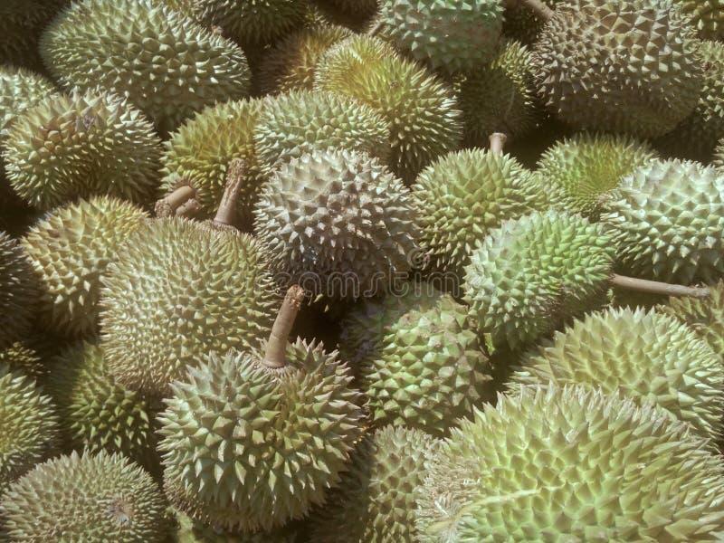 Pilha do fruto maduro do durian pronto à venda foto de stock