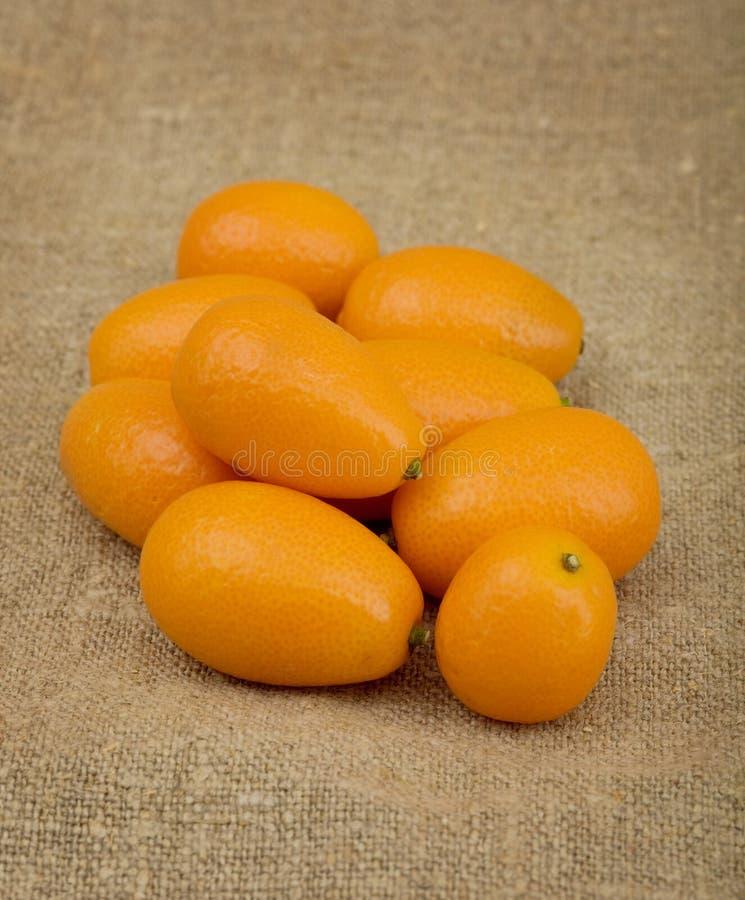 Pilha do kumquat imagens de stock