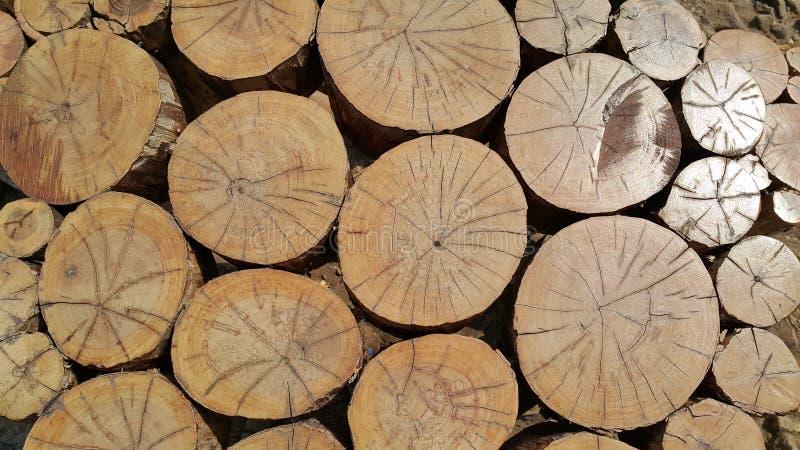 Pilha do log fotografia de stock