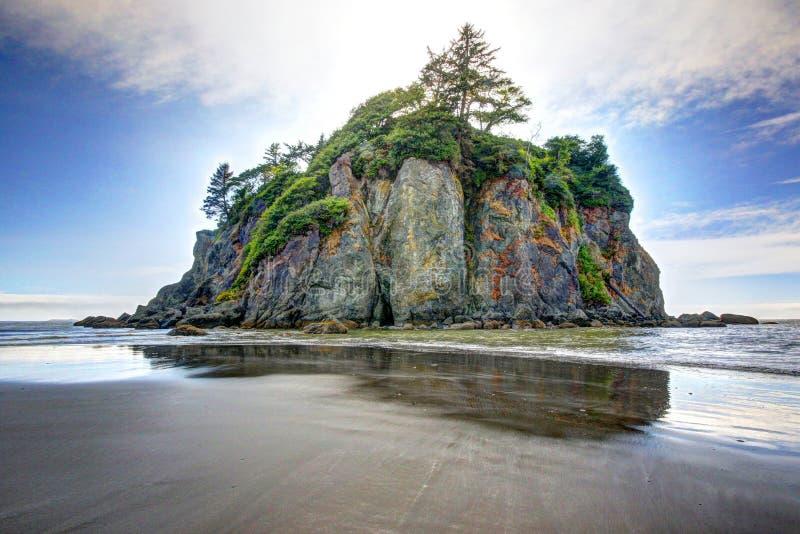 Pilha do mar em Ruby Beach em Washington State imagens de stock