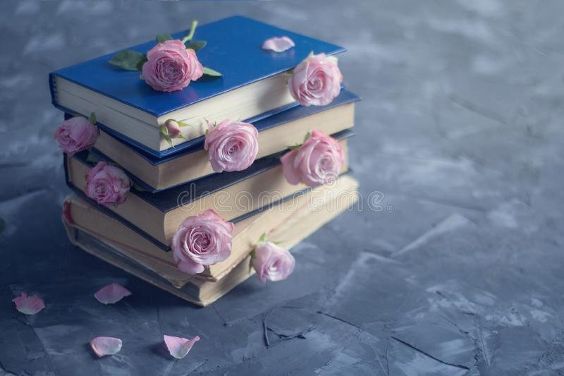 Pilha dos livros velhos e das rosas cor-de-rosa no fundo concreto Tons temperamentais e tiro macio do foco foto de stock royalty free