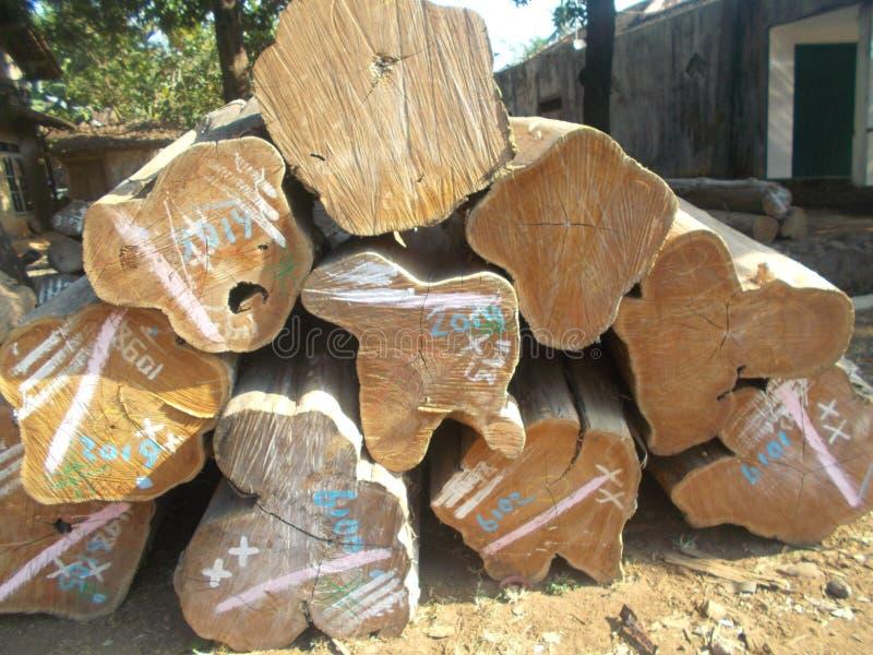 Pilha dos logs 2 de madeira imagem de stock