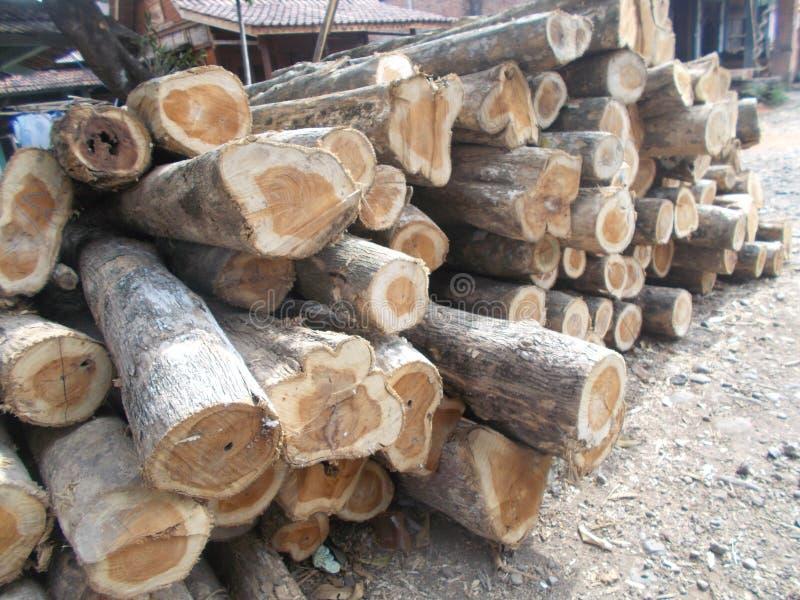 Pilha dos logs 5 de madeira imagens de stock royalty free