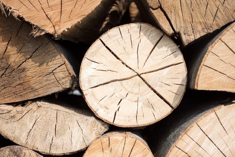 Pilha dos registros de madeira prontos para o inverno imagem de stock royalty free