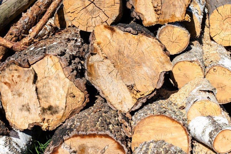 A pilha enorme de lenha marrom feita das árvores estabeleceu-se na jarda na vila imagens de stock royalty free
