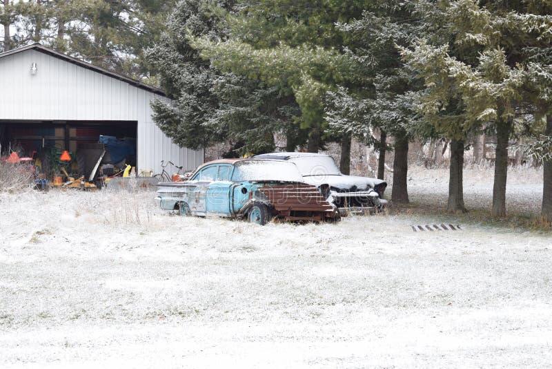 Pilha maciça da lenha cortada pelo lenhador Pine Trees Covered na neve fraca imagem de stock