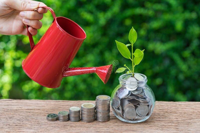 Pilha molhando da mão de moedas e de planta do broto do crescimento como o negócio fotos de stock