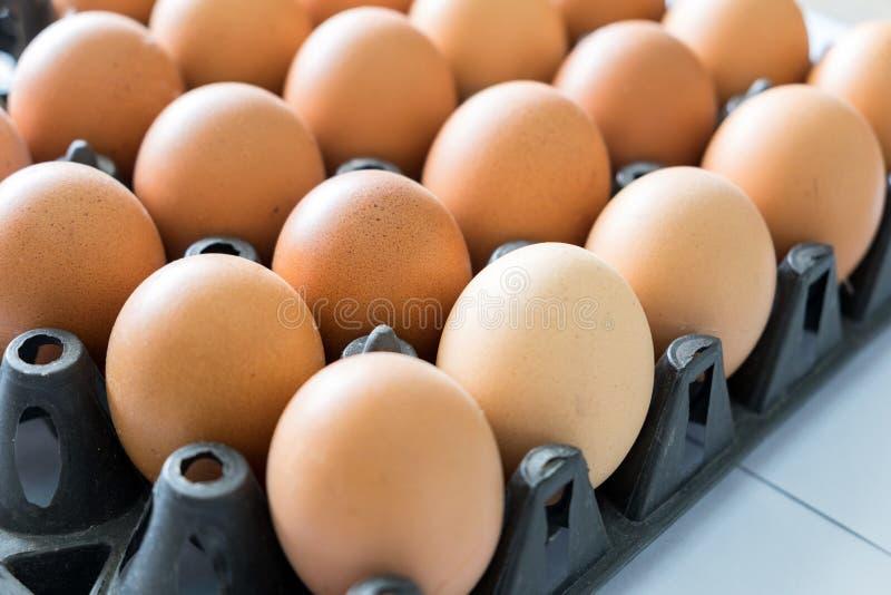 Pilha plástica do preto da bandeja do ovo imagem de stock