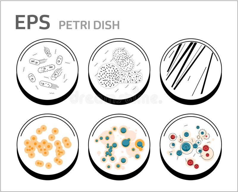Pilhas das bactérias do vetor nos pratos de petri isolados ilustração royalty free