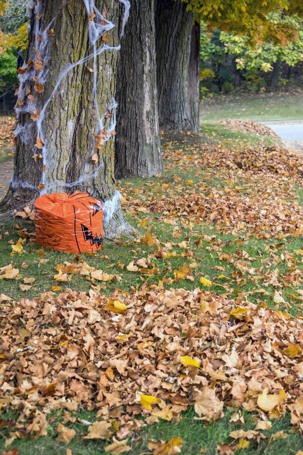 Pilhas das folhas da queda, ao longo de uma estrada em Michigan fotografia de stock