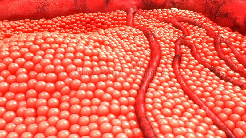Pilhas de corpo humano foto de stock royalty free