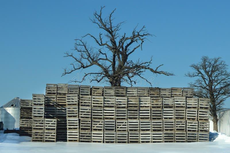Pilhas de páletes de madeira no inverno com neve fotografia de stock royalty free