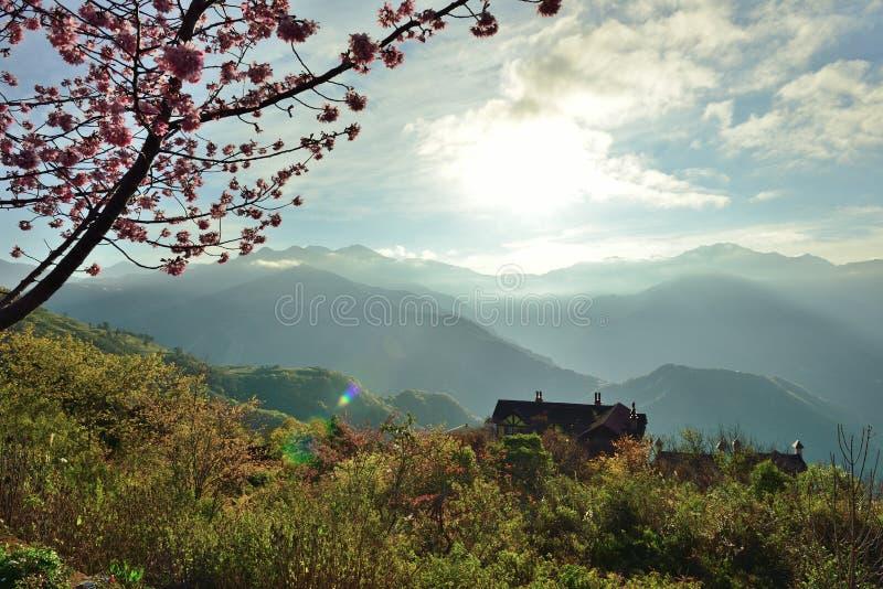 Piliśmy w pięknie krajobraz Piękna sceneria zyskiwał miejsce zupełnie reputacja zdjęcie royalty free