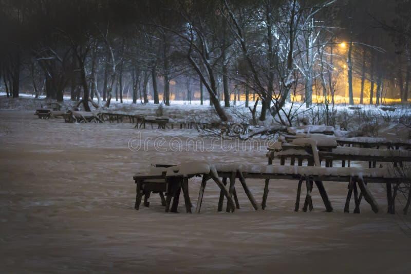 Pilier d'hiver sur la rivière de lac dans la neige photos stock