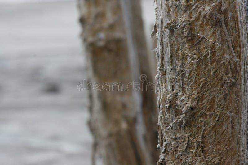 Pilier d'Izmerayuschy des niveaux de sel photos stock