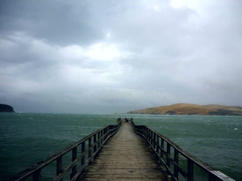 Pilier d'Omapere, Nouvelle-Zélande photographie stock libre de droits