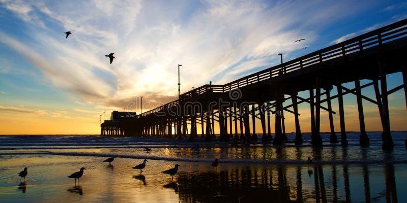 Pilier de la Californie de plage de Newport au coucher du soleil image libre de droits