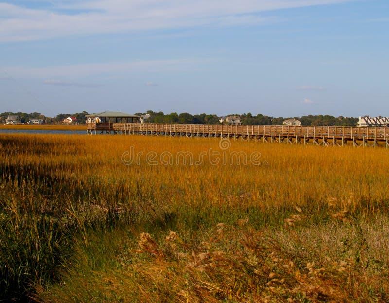Pilier de marais de plage de folie photographie stock