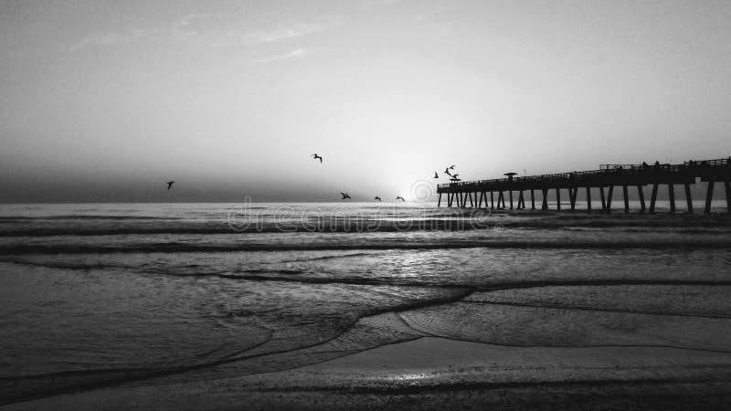 Pilier de plage de Jacksonville images stock
