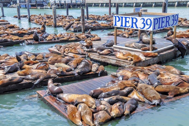 Pilier 39 et quai du pêcheur photographie stock