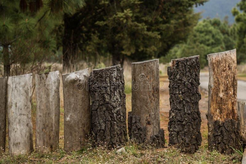 Piliers en bois images libres de droits